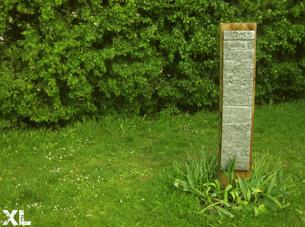 ariana sculpt 72